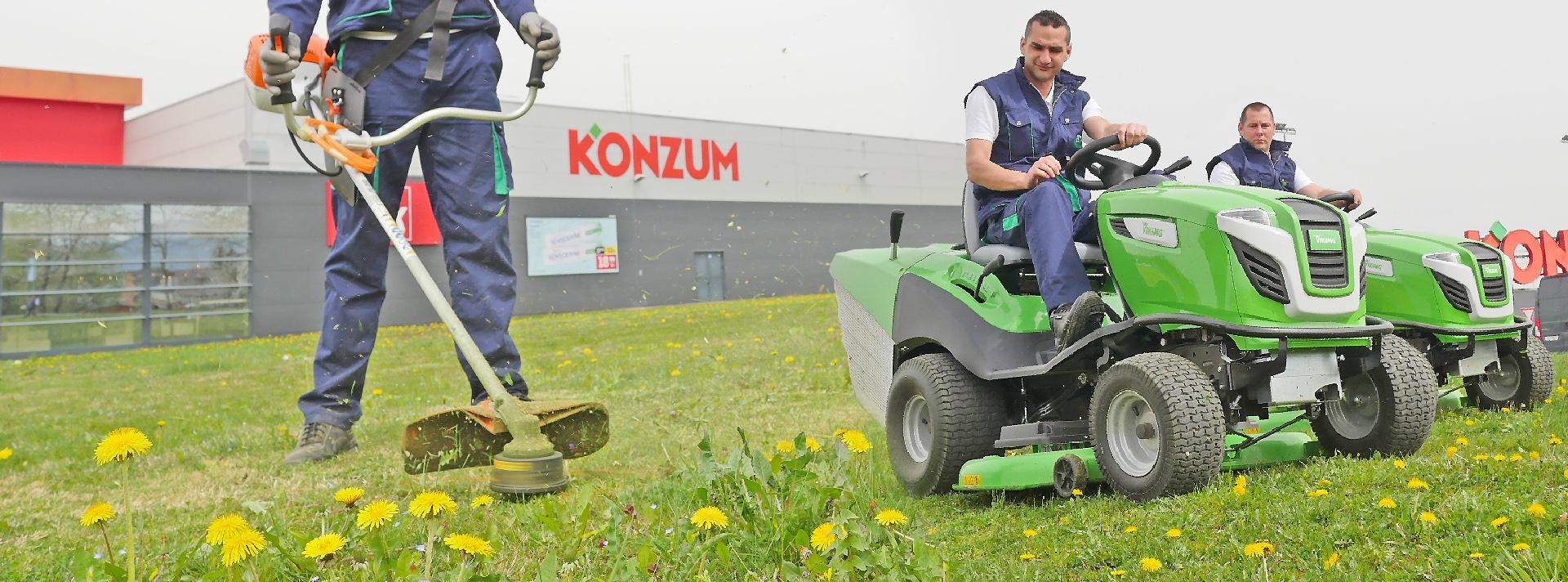 hortikultura (2)